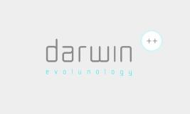 naming + logo