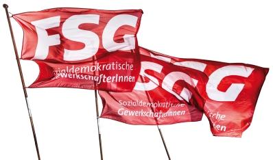FSG-Fraktionskonferenz 2013
